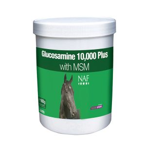 Glucosamine 10 000 Plus with MSM 900g 1