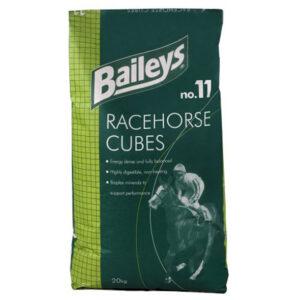 Nr11 Racehorse cubes 1