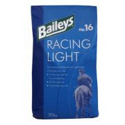 Nr16 Racing light