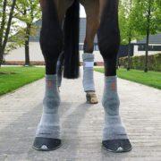Incrediwear-Equine-CirculationSocks-3