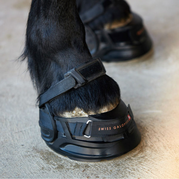swiss-galopper-zirgu-botas-2