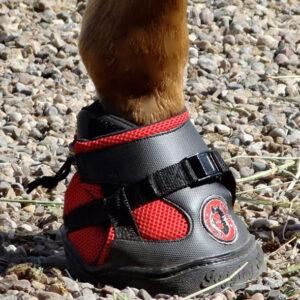 ultra-jogging-shoe-2