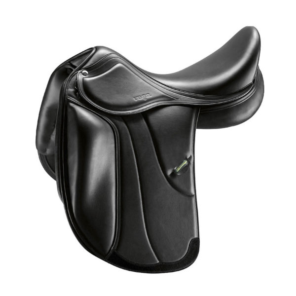 Amerigo Vega Dressage Special